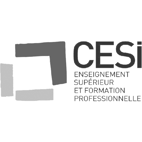 www.cesi.fr
